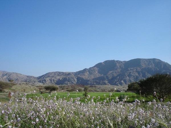 الطويين : منطقة ساحرة بين الجبال الشامخة