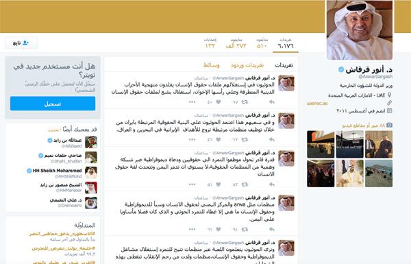 قرقاش: الحوثيون يستغلون ملفات حقوق الإنسان مثل الإخوان