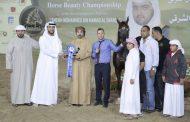 منافسات مثيرة في بطولة الفجيرة لجمال الخيل العربي  والتميز يشمل الجميع