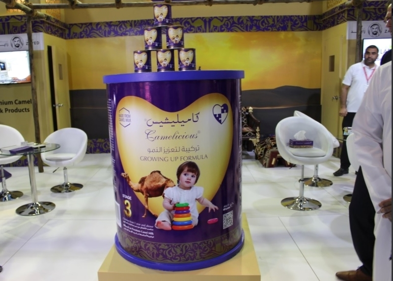 الإمارات تنتج أول حليب إبل للأطفال