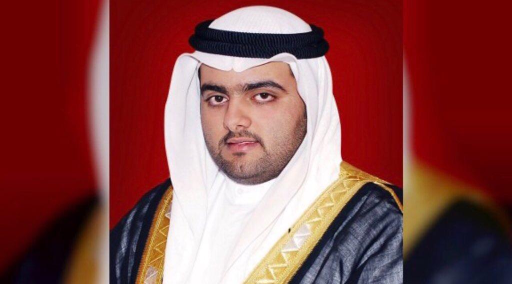 بدعم من محمد الشرقي .. مسوحات جوية لرصد الثدييات البحرية في الفجيرة