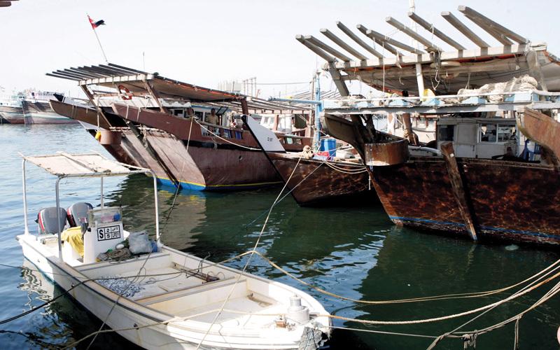 «التغير المناخي والبيئة» تدعم 35% من الصيادين بمحركات جديدة