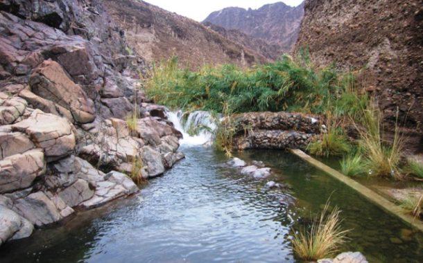 الإمارات الثانية عالمياً في الأمان السياحي