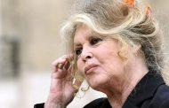 ملكة الإغراء الفرنسية تزدري البشر بسبب الحيوانات
