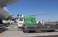 محمد بن راشد يخصص طائرة لنقل مساعدات لضحايا الإعصار في موزمبيق