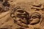 صور منحوتات على رمال الشواطئ في بوليفيا احتفالا بعيد القيامة
