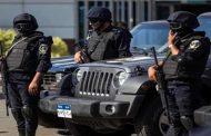 الأمن المصري يحبط