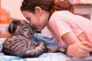 مداعبة الحيوانات الأليفة تخلّصك من التوتر