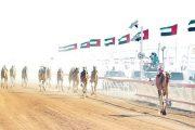 مهرجان محمد بن زايد لسباقات الهجن ينطلق 23 ديسمبر