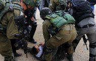 قوات الاحتلال تعتقل 11 فلسطينياً من الضفة