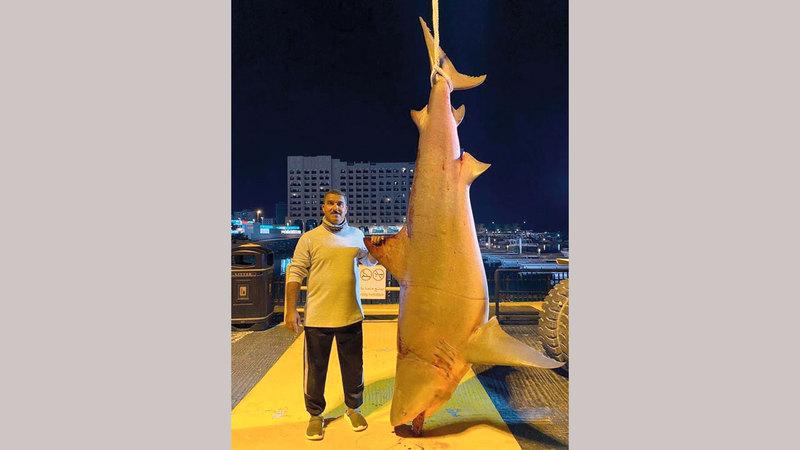 «صائد القروش» الإماراتي يواصل هوايته.. ويصطاد سمكة عملاقة