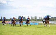 تأجيل يوم دبي الدولي للخيول العربية بنيوبري للعام المقبل