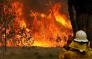 درجات حرارة قياسية في أستراليا ومخاوف من حرائق غابات