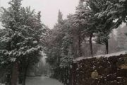 ثلج لبنان.. موسم أبيض «تغمره» الأيام السود