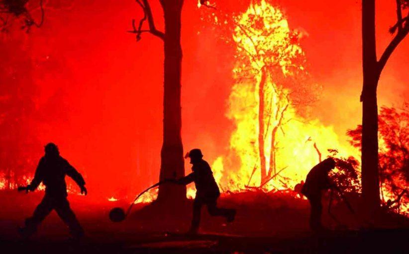 حريق الغابات في اليابان يستمر لليوم الخامس والسكان يخلون منازلهم