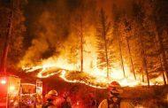 حفل كارثي يتسبب بقتل وإصابات وحرائق في أمريكا