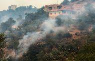 ارتفاع عدد ضحايا حرائق الغابات في الجزائر إلى 42 قتيلاً