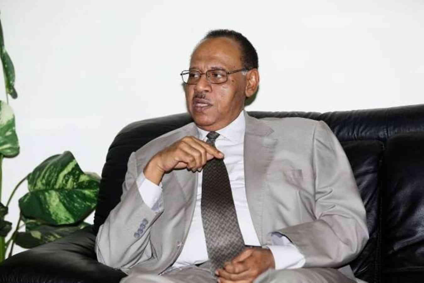 سفير السودان لدى الإمارات: دبي مركز عالمي للتواصل